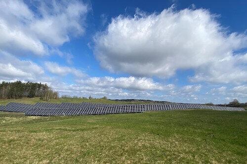 saules parkas vytis ant žalios žemės